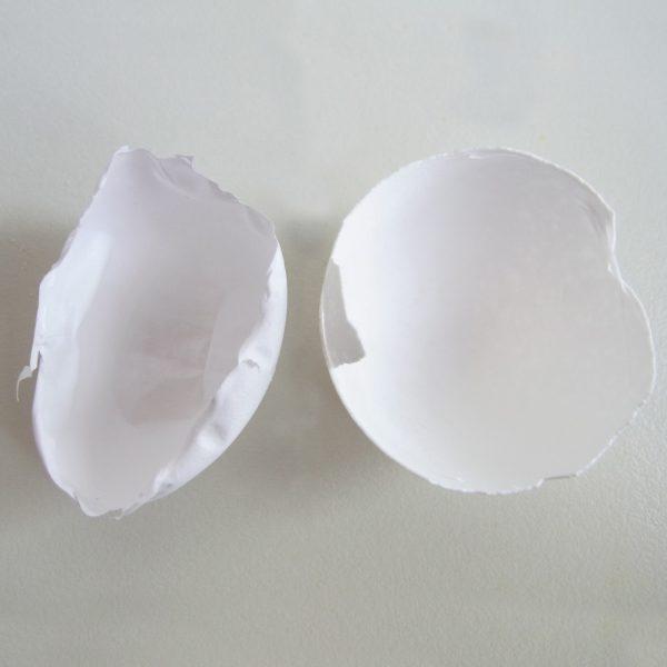 Мембрана куриного яйца